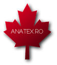 ANATEX INTERNATIONAL